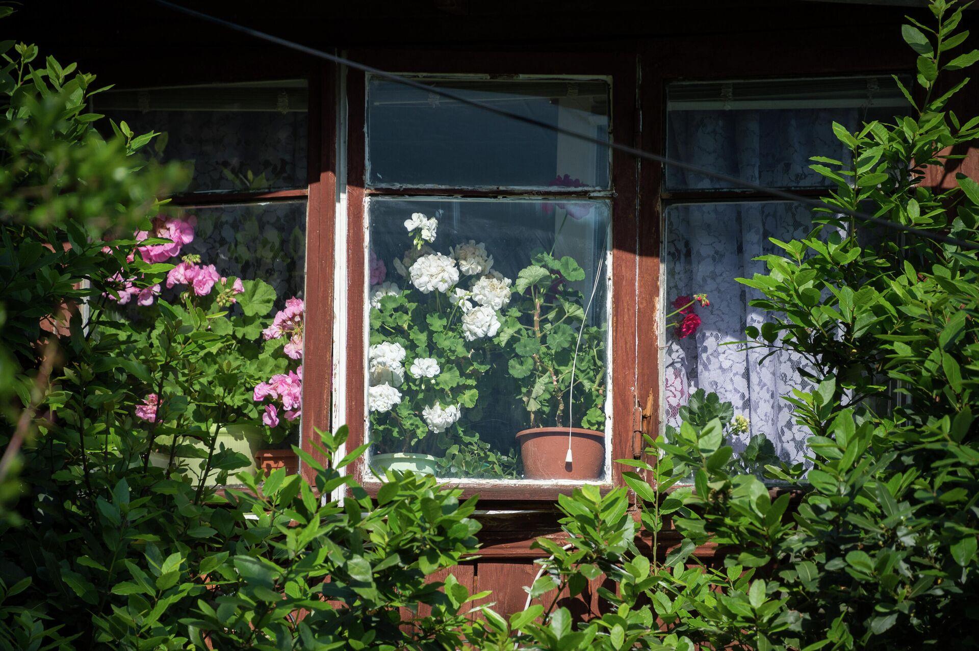 Окно жилого дома - РИА Новости, 1920, 06.10.2021