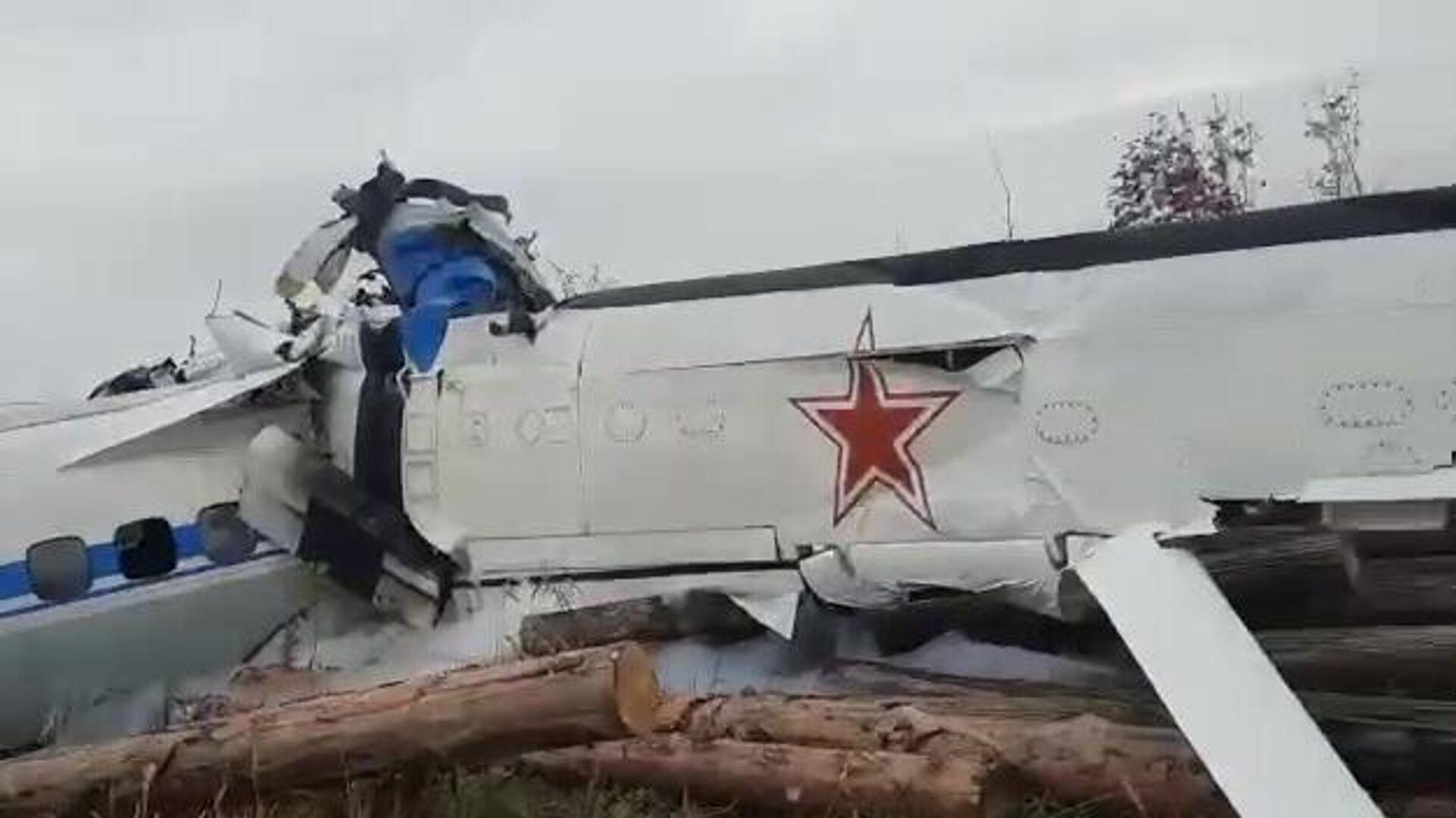 Легкомоторный самолет L-410, разбившийся в нескольких километрах от Мензелинска в Татарстане (скриншот видео) - РИА Новости, 1920, 10.10.2021