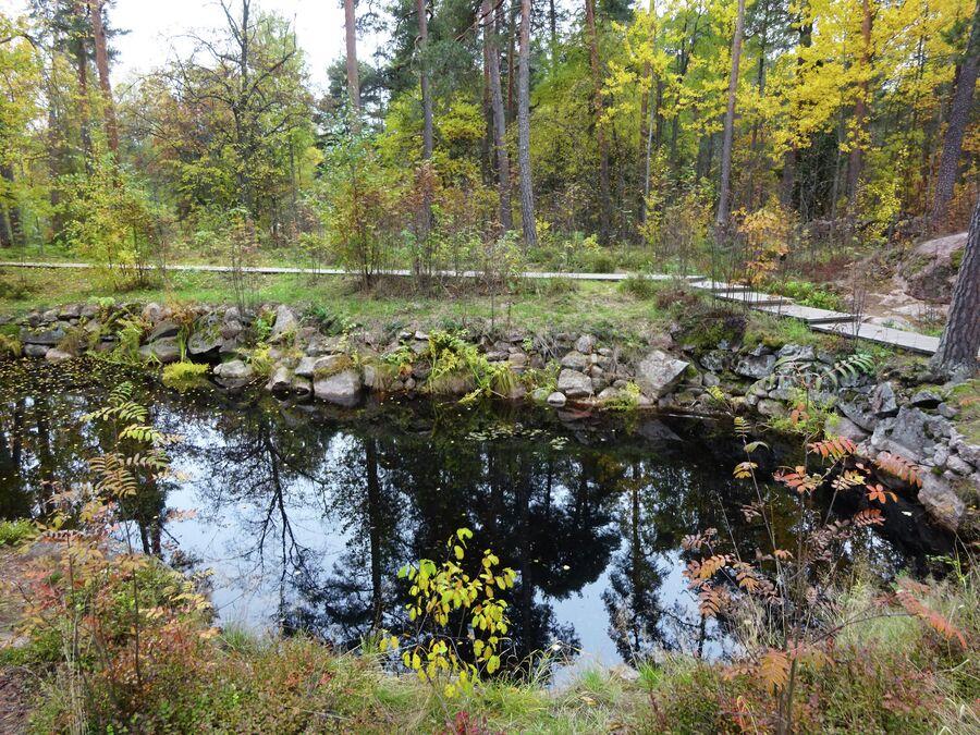 Пруд Паульштайн в парке Монрепо