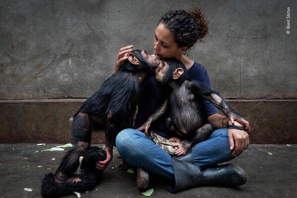 Работа фотографа Brent Stirton в фотоконкурсе Wildlife Photographer of the Year 2021