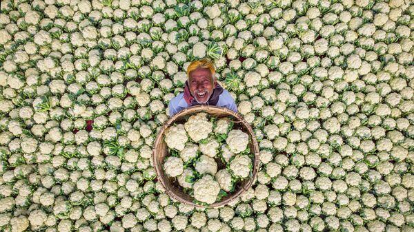 Работа фотографа Рафида Ясара Счастливый фермер. Моя Планета, одиночные фотографии, Особая отметка жюри
