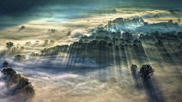 Работа фотографа Giulio Montini Утренний туман, главный победитель в фотоконкурсе Weather Photographer of the year 2021