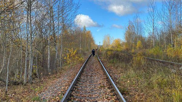 В Пскове у железнодорожных путей нашли тело младенца