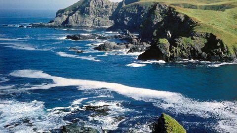 Остров Беринга и его обитатель
