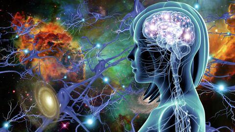 Мозг в потоке