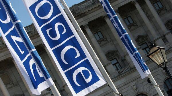Флаги с логотипом ОБСЕ в Вене. Архивное фото