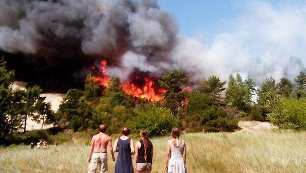 Пожар на Куршской косе в Калининграде. Архивное фото