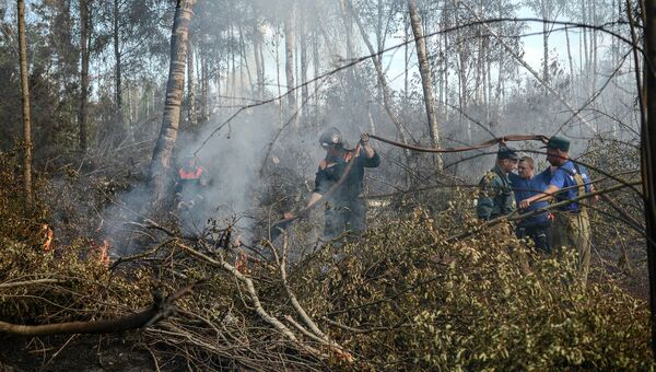 Сотрудники МЧС России на месте лесных пожаров в Тверской области. Архивное фото