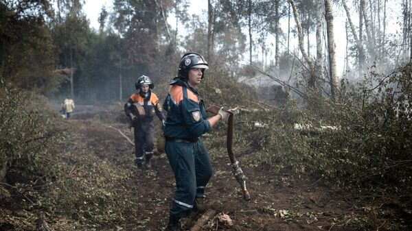 Сотрудники пожарной охраны. Архивное фото