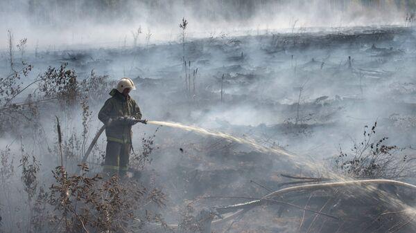 Сотрудник МЧС РФ во время тушения торфяных пожаров недалеко от населенного пункта Денисово в Тверской области