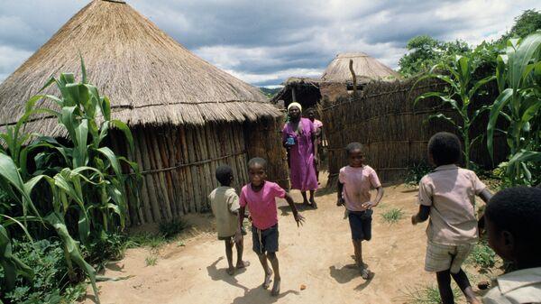Африка. Архивное фото