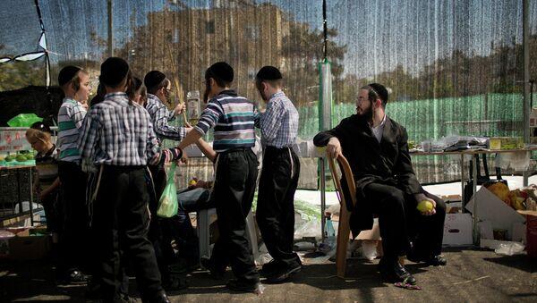 Подготовка к празднику Суккот в Израиле. Архив