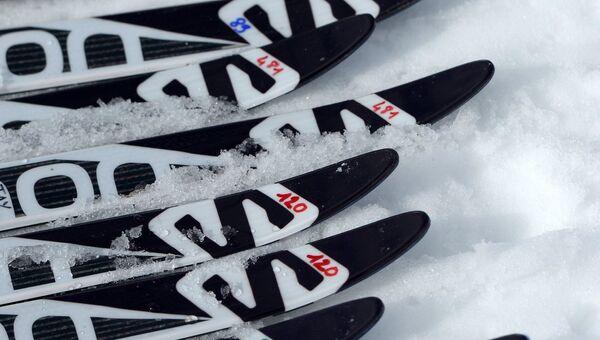 Лыжные гонки, архивное фото