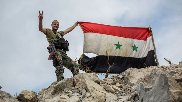 Военнослужащий правительственной армии Сирии. Архивное фото