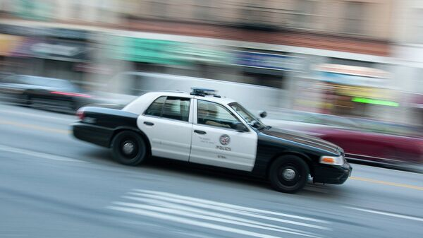 Машина полиции США. Архивное фото
