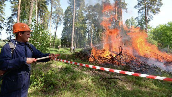 Сотрудник лесной охраны тушит пожар в рамках командно-штабных учений МЧС в Зеленодольске. Архивное фото