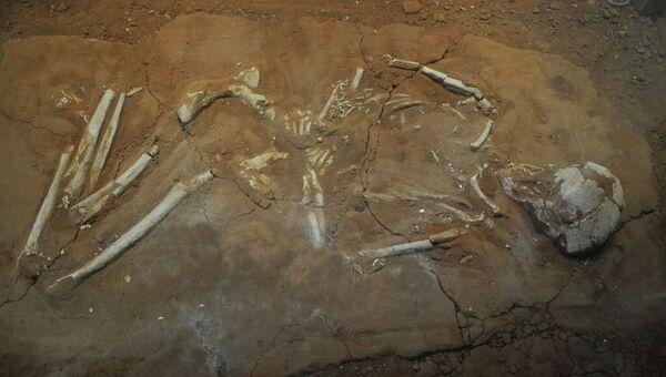 Древний грек, похороненный на кладбище города Камарина