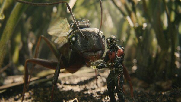 Кадр из фильма Человек-муравей (2015)