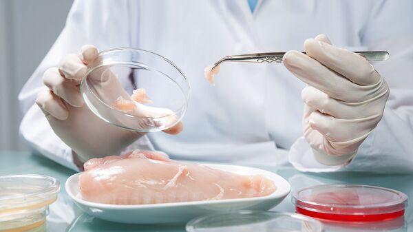 Проверка куриного мяса в лаборатории. Архив