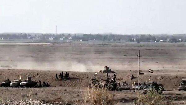 Иракские силы безопасности на окраине города Эль-Фаллуджа, провинция Анбар. Архивное фото