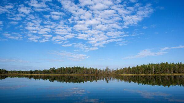 Лесное озеро в Республике Карелия. Архивное фото