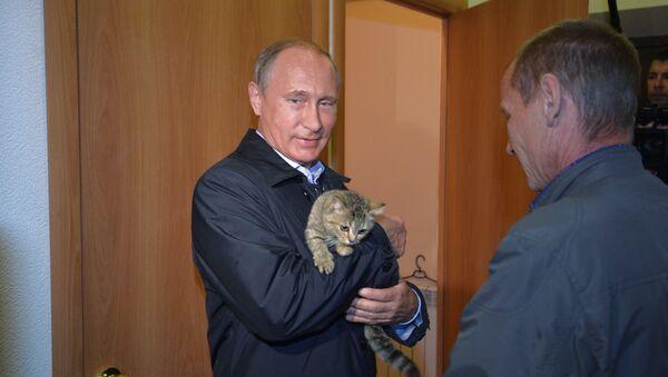 Президент России Владимир Путин осматривает ход строительства жилья для пострадавших от пожаров