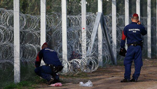 Колючее ленточное заграждение на территории Венгрии. 15 сентября 2015