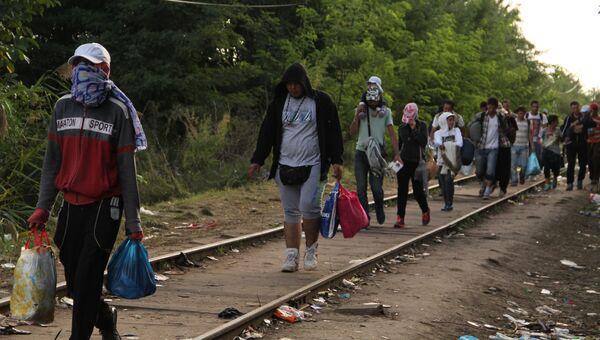 Беженцы на границе Венгрии