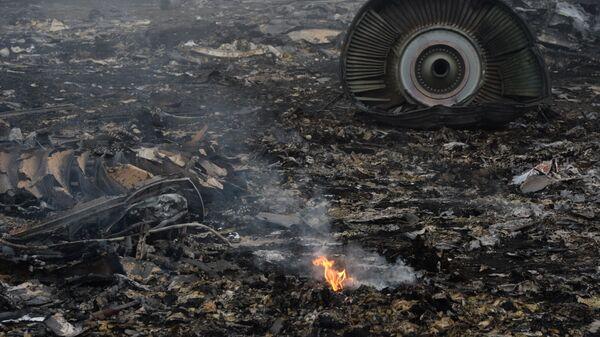 На месте крушения малайзийского самолета Boeing 777 в Донецкой области. Архивное фото
