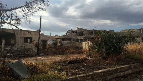 Освобожденное от боевиков ИГИЛ село в сирийской провинции Хама. Архивное фото