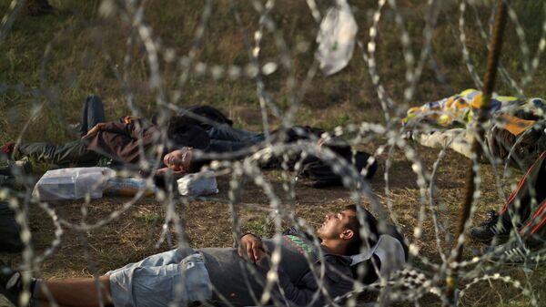 Мигранты из Афганистана на границе Венгрии и Сербии