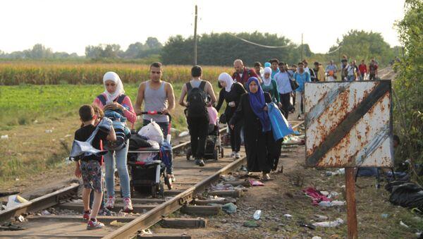 Беженцы, не успевшие перейти на венгерскую сторону, бредут вдоль границы. Архивное фото