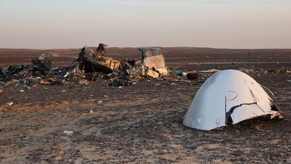 Поисковые работы на месте крушения российского самолета Airbus A321 в Египте. Архивное фото.