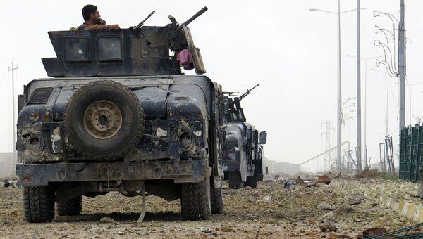 Иракские силы по борьбе с терроризмом продвигаются к Рамади, Ирак. Декабрь 2015. Архивное фото