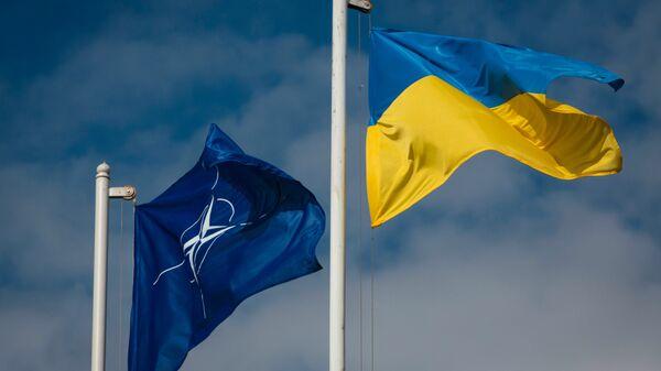 Национальный флаг Украины и флаг НАТО. Архивное фото