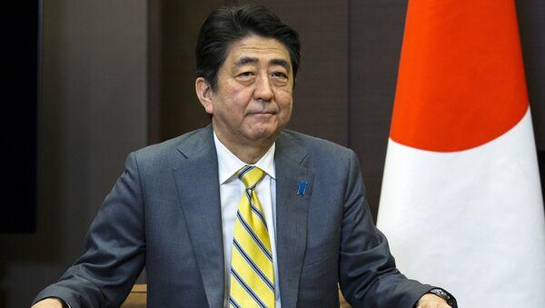 Премьер-министр Японии Синдзо Абэ во время встречи в резиденции Бочаров ручей с президентом России Владимиром Путиным