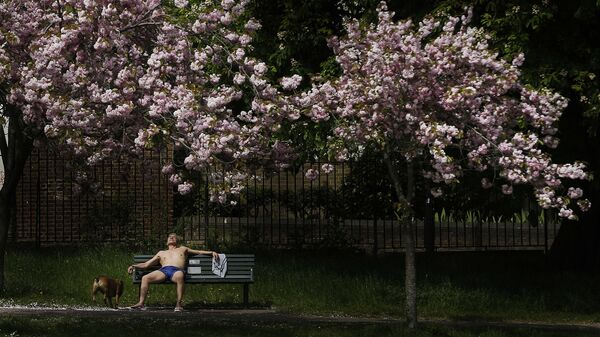 Житель Лондона с собакой в парке