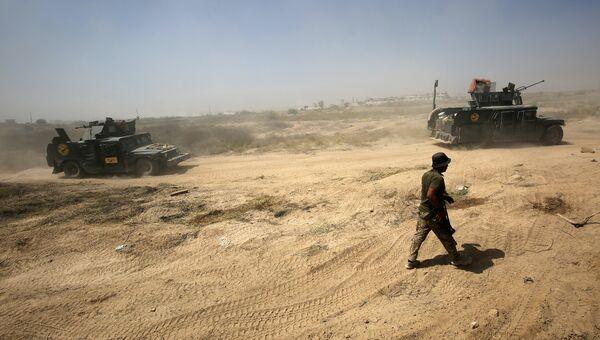 Иракские правительственные войска во время операции против ИГИЛ в городе Эль-Фаллуджа. Архивное фото