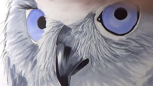 Ручная сова