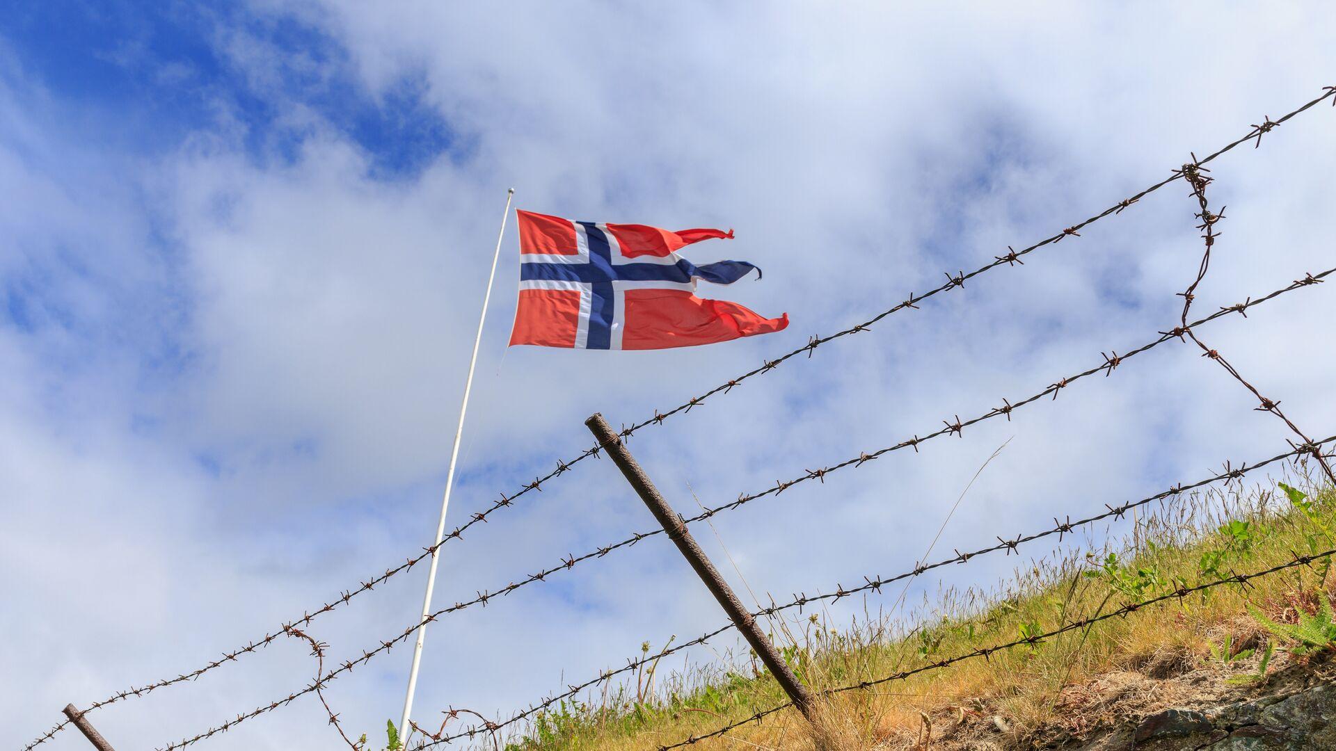 Флаг на норвежской границе - РИА Новости, 1920, 29.04.2021