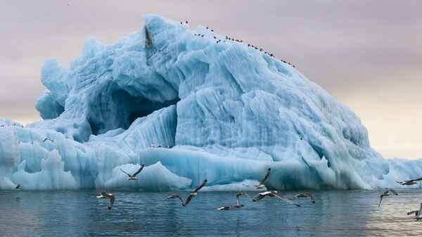 Айсберг в бухте Тихая. Архивное фото