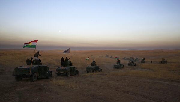 Наступление правительственных сил и формирований пешмерга на Мосул в Ираке. Архивное фото
