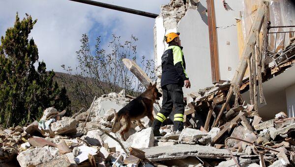 Спасатель с собакой на месте обрушившегося в результате землетрясения дома. Провинция Мачерата, Италия. 27 октября 2016