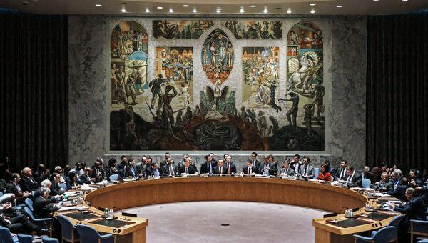 В Совете Безопасности ООН. Архивное фото