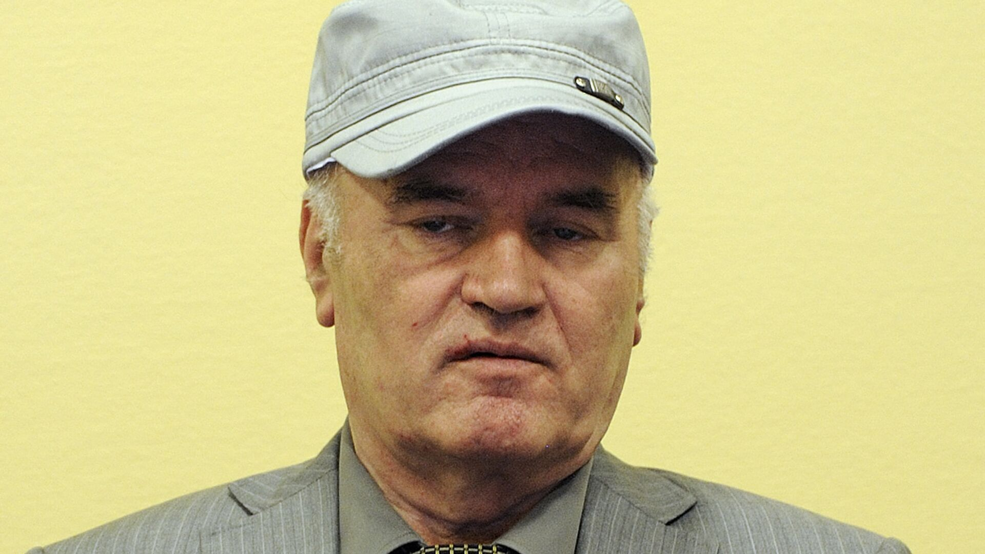 Сербский генерал Ратко Младич в Международном трибунале по бывшей Югославии (МТБЮ) в Гааге, Нидерланды - РИА Новости, 1920, 08.06.2021