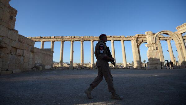 Военнослужащий в исторической части Пальмиры. Архивное фото
