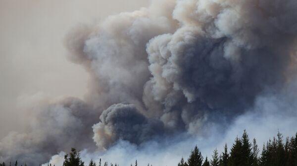 Лесной пожар в окрестностях города Форт Мак-Муррей, Канада. Архивное фото