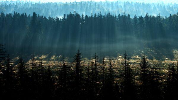 В России появился комплекс мониторинга парниковых газов и «дыхания» почв