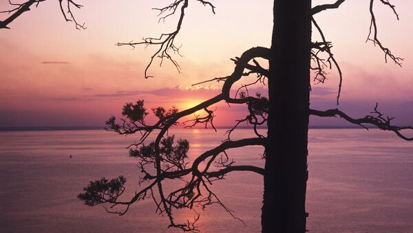 Подписано постановление о создании национального парка Сенгилеевские горы