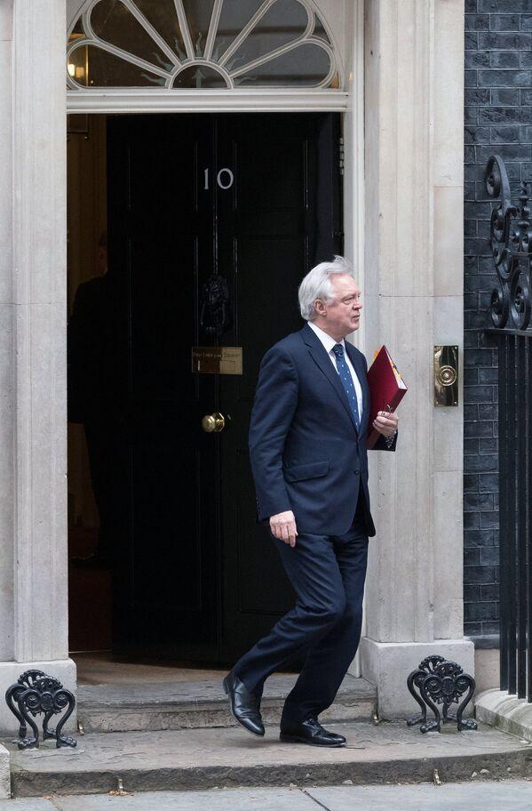 Министр по вопросам выхода из ЕС Дэвид Дэвис у резиденции главы правительства Великобритании на Даунинг-стрит, 10